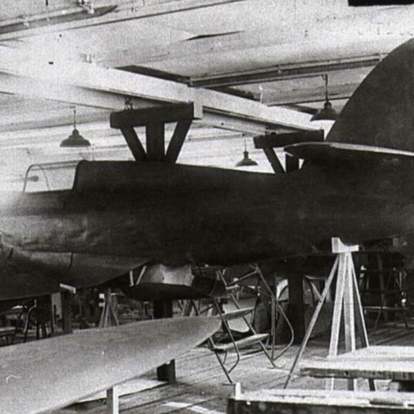 1.Полноразмерный макет ИП-2 (ДГ-54).