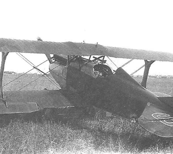 4в.И-2 бис из 19-й эск. на аэродроме в Брянске Сентябрь 1929 г.