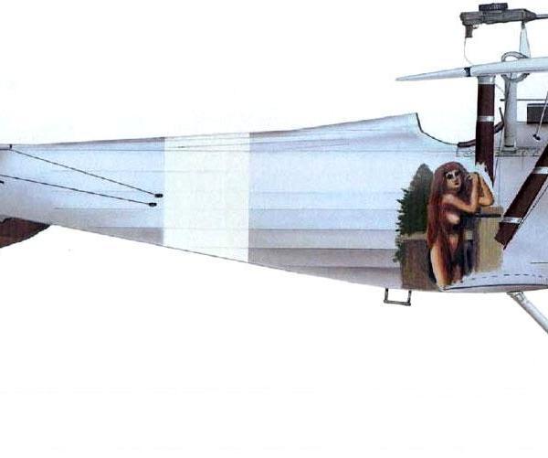 10.Nieuport N.24bis ВВС Польши. Рисунок.