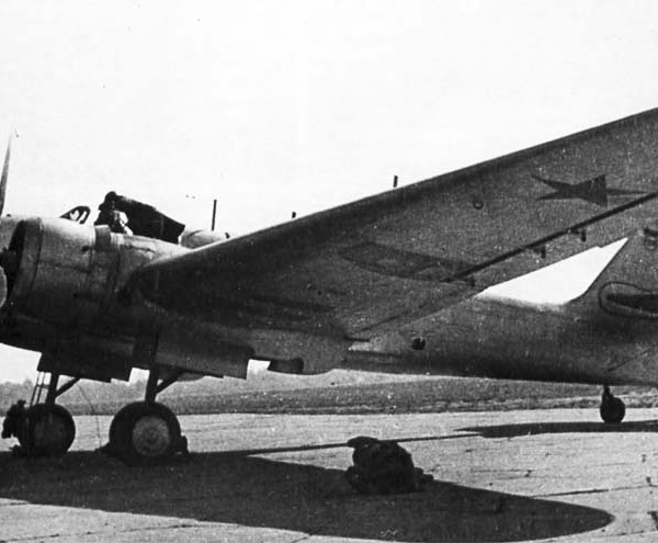 2.АНТ-37бис Родина на стоянке.