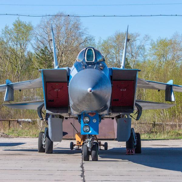 6.МиГ-31Э. Вид спереди.
