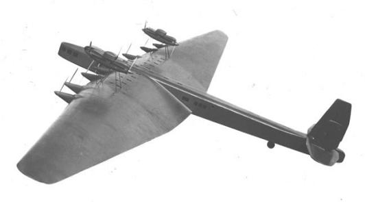 ant-26